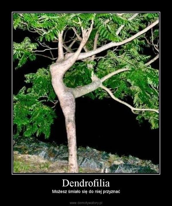 Dendrofilia – Możesz śmiało się do niej przyznać