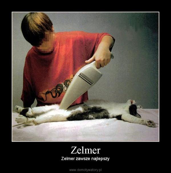 Zelmer – Zelmer zawsze najlepszy