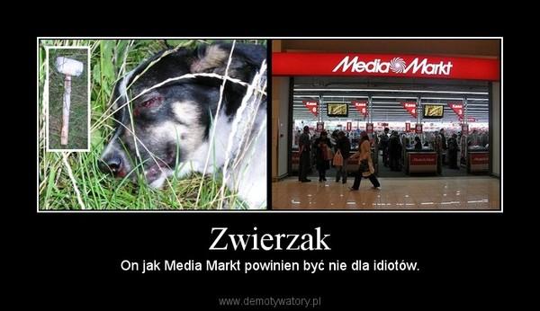 Zwierzak – On jak Media Markt powinien być nie dla idiotów.