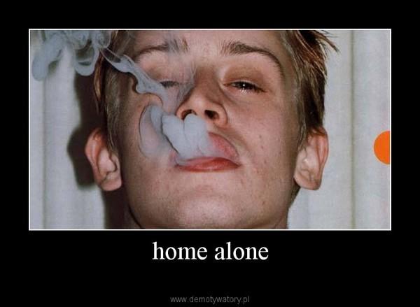 home alone –