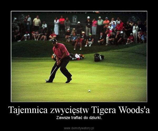 Tajemnica zwycięstw Tigera Woods'a – Zawsze trafiać do dziurki.