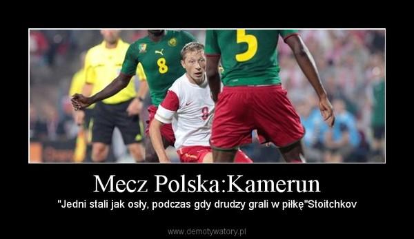 """Mecz Polska:Kamerun – """"Jedni stali jak osły, podczas gdy drudzy grali w piłkę""""Stoitchkov"""