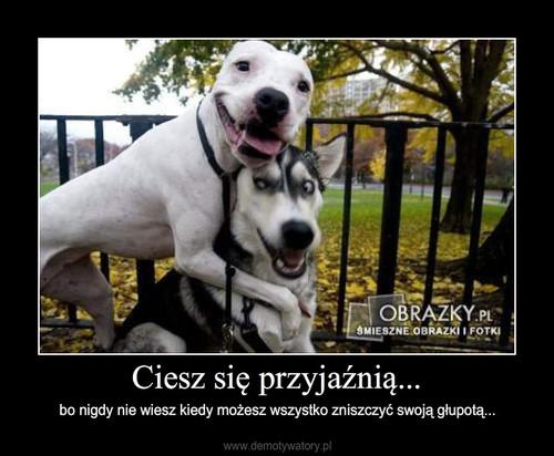 Ciesz się przyjaźnią...