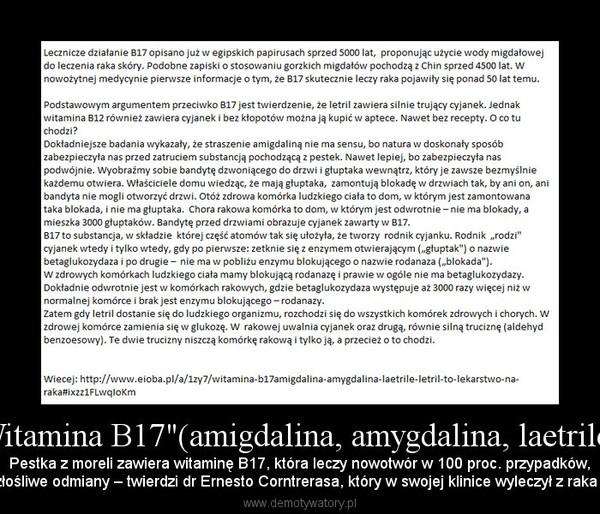 """""""Witamina B17""""(amigdalina, amygdalina, laetrile,.. – Pestka z moreli zawiera witaminę B17, która leczy nowotwór w 100 proc. przypadków,nawet jego najbardziej złośliwe odmiany – twierdzi dr Ernesto Corntrerasa, który w swojej klinice wyleczył z raka wiele tysięcy pacjentów"""