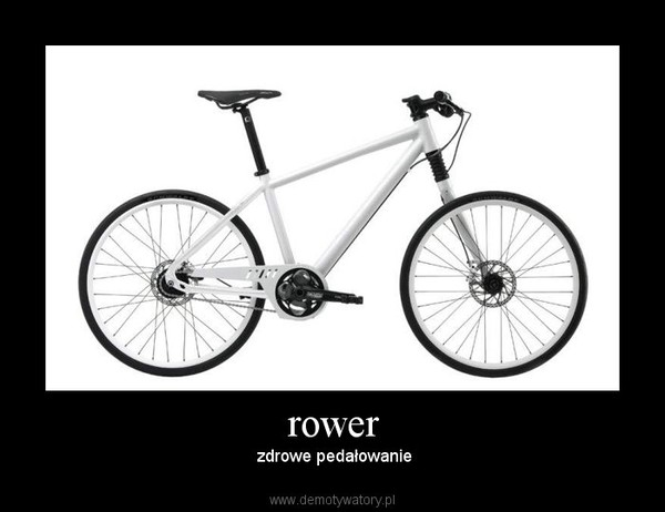 rower – zdrowe pedałowanie