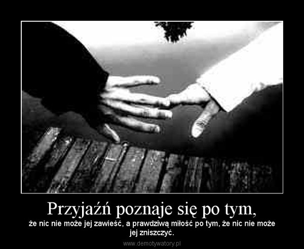 Przyjaźń poznaje się po tym, – że nic nie może jej zawieść, a prawdziwą miłość po tym, że nic nie możejej zniszczyć.