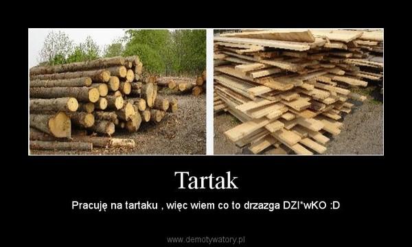 Tartak – Pracuję na tartaku , więc wiem co to drzazga DZI*wKO :D