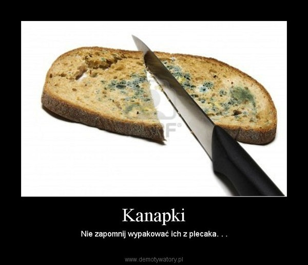 Kanapki – Nie zapomnij wypakować ich z plecaka. . .