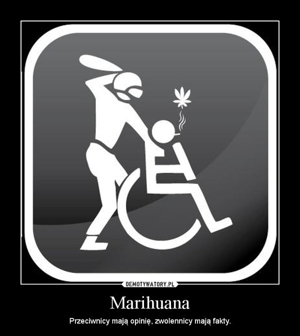 Marihuana – Przeciwnicy mają opinię, zwolennicy mają fakty.