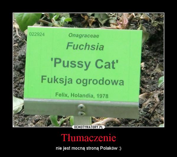 Tłumaczenie – nie jest mocną stroną Polaków :)