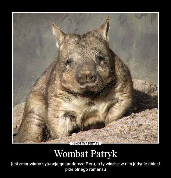 Wombat Patryk – jest zmartwiony sytuacją gospodarczą Peru, a ty widzisz w nim jedynie obiekt przelotnego romansu