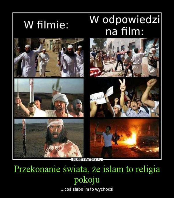 Przekonanie świata, że islam to religia pokoju – ...coś słabo im to wychodzi