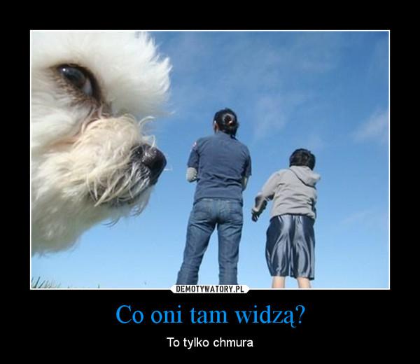 Co oni tam widzą? – To tylko chmura