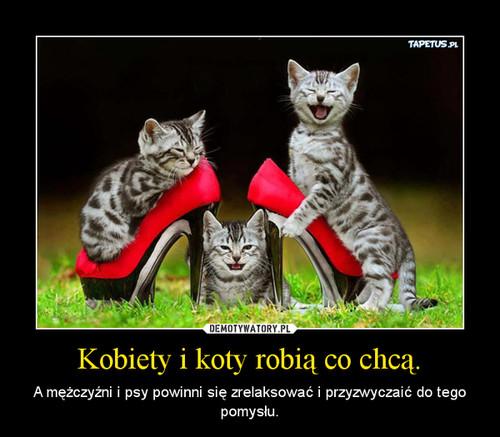 Kobiety i koty robią co chcą.