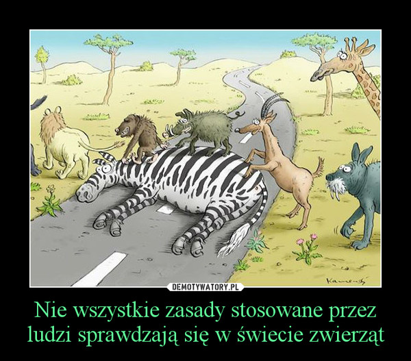 Nie wszystkie zasady stosowane przez ludzi sprawdzają się w świecie zwierząt –