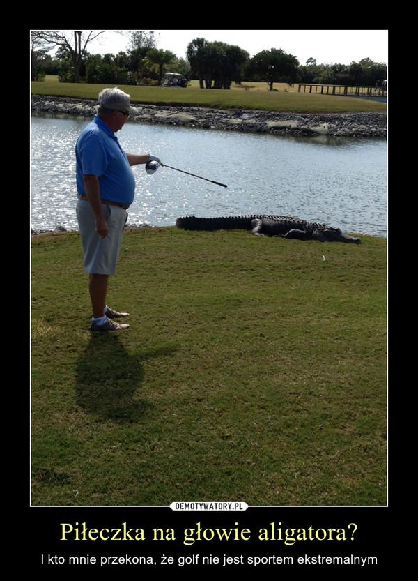 Piłeczka na głowie aligatora? – I kto mnie przekona, że golf nie jest sportem ekstremalnym