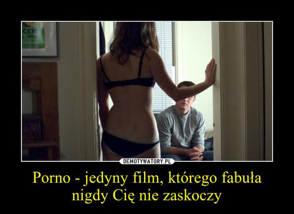 Porno - jedyny film, którego fabuła nigdy Cię nie zaskoczy –