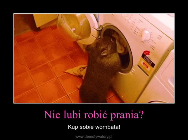 Nie lubi robić prania? – Kup sobie wombata!