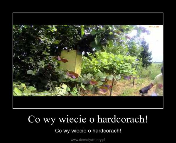 Co wy wiecie o hardcorach! – Co wy wiecie o hardcorach!