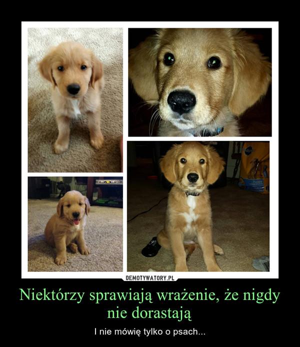 Niektórzy sprawiają wrażenie, że nigdy nie dorastają – I nie mówię tylko o psach...