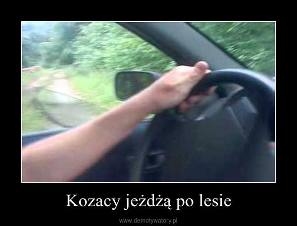 Kozacy jeżdżą po lesie –
