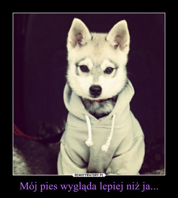 Mój pies wygląda lepiej niż ja... –