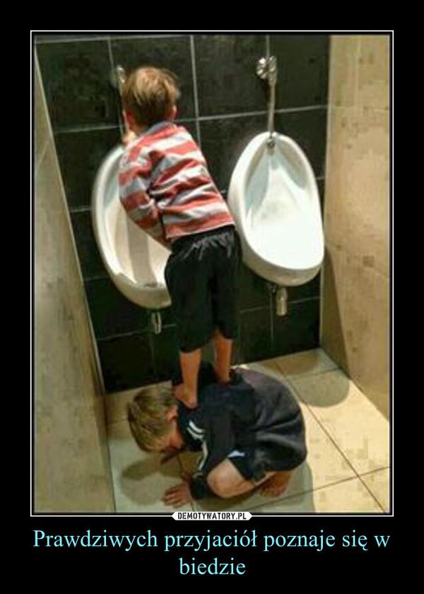 Prawdziwych przyjaciół poznaje się w biedzie –