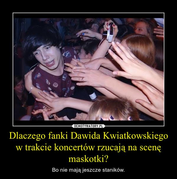 Dlaczego fanki Dawida Kwiatkowskiego w trakcie koncertów rzucają na scenę maskotki? – Bo nie mają jeszcze staników.