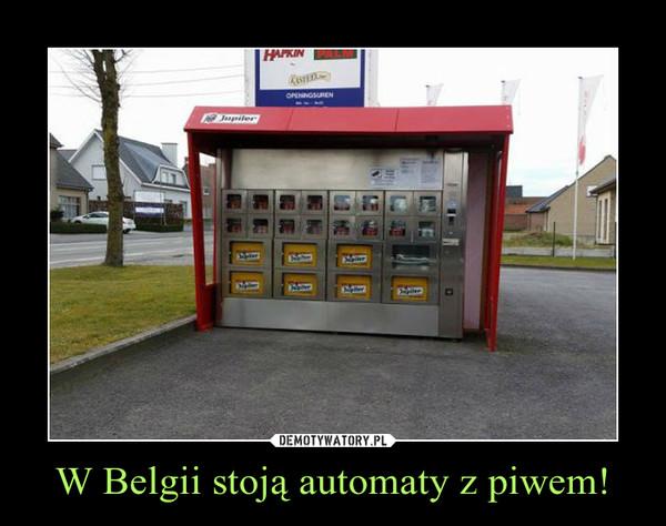 W Belgii stoją automaty z piwem! –