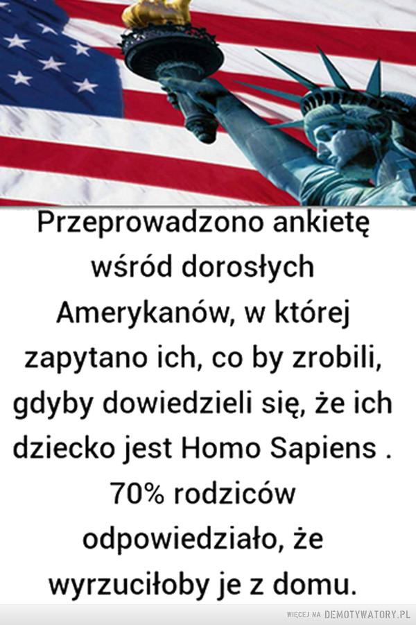 Amerykańska sonda –