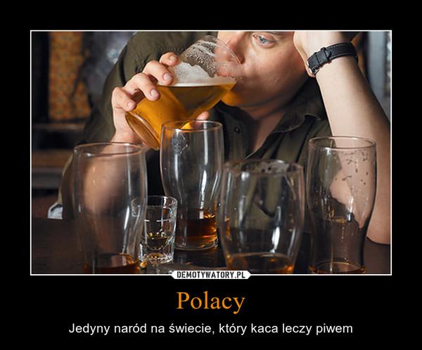 Polacy – Jedyny naród na świecie, który kaca leczy piwem