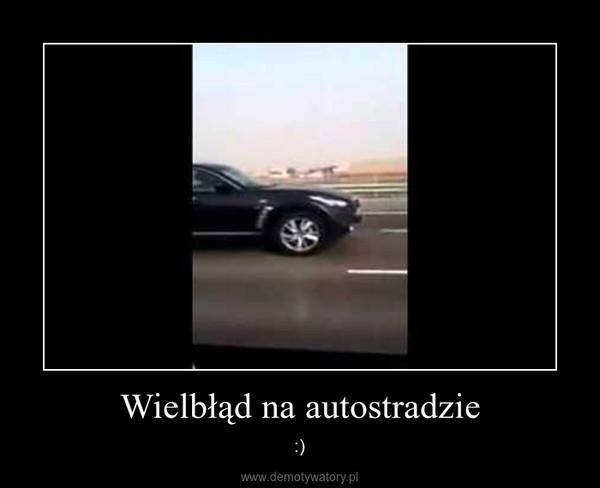 Wielbłąd na autostradzie – :)