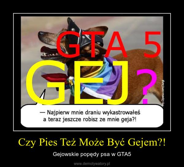Czy Pies Też Może Być Gejem?! – Gejowskie popędy psa w GTA5