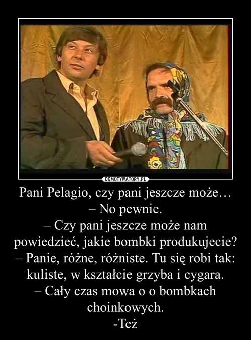 Pani Pelagio, czy pani jeszcze może… – No pewnie. – Czy pani jeszcze może nam powiedzieć, jakie bombki produkujecie? – Panie, różne, różniste. Tu się robi tak: kuliste, w kształcie grzyba i cygara. – Cały czas mowa o o bombkach choinkowych. -Też