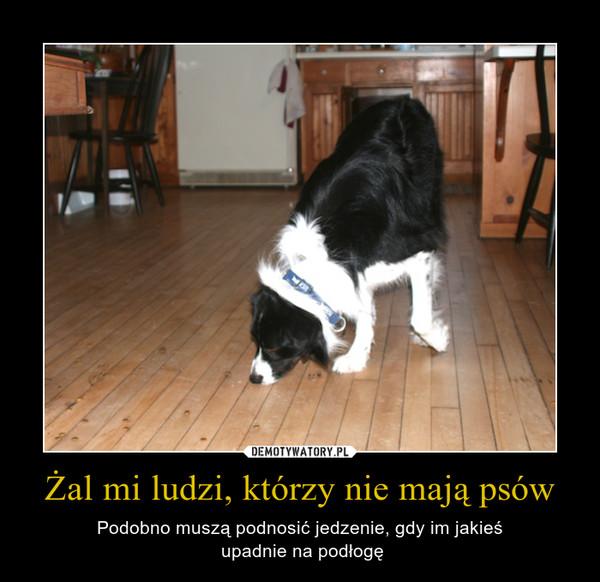 Żal mi ludzi, którzy nie mają psów – Podobno muszą podnosić jedzenie, gdy im jakieś upadnie na podłogę