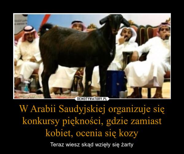 W Arabii Saudyjskiej organizuje się konkursy piękności, gdzie zamiast kobiet, ocenia się kozy – Teraz wiesz skąd wzięły się żarty