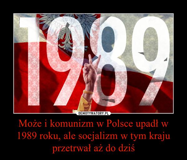 Może i komunizm w Polsce upadł w 1989 roku, ale socjalizm w tym kraju przetrwał aż do dziś –
