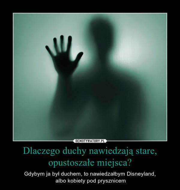 Dlaczego duchy nawiedzają stare, opustoszałe miejsca? – Gdybym ja był duchem, to nawiedzałbym Disneyland, albo kobiety pod prysznicem