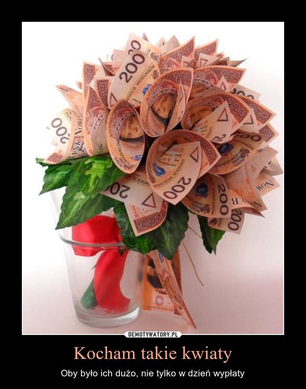 Kocham takie kwiaty – Oby było ich dużo, nie tylko w dzień wypłaty