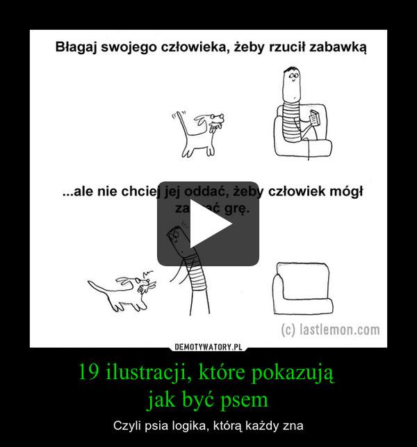 19 ilustracji, które pokazują jak być psem – Czyli psia logika, którą każdy zna