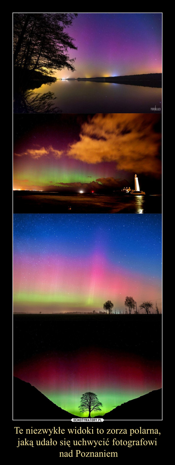 Te niezwykłe widoki to zorza polarna, jaką udało się uchwycić fotografowi nad Poznaniem –