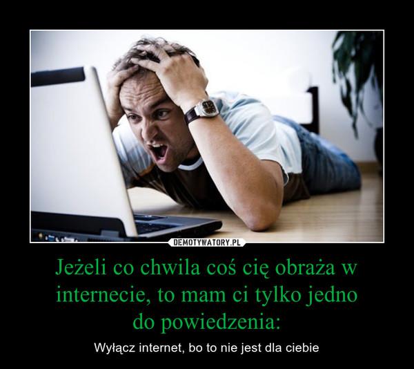 Jeżeli co chwila coś cię obraża w internecie, to mam ci tylko jednodo powiedzenia: – Wyłącz internet, bo to nie jest dla ciebie