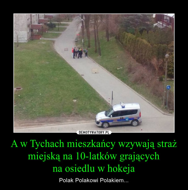 A w Tychach mieszkańcy wzywają straż miejską na 10-latków grającychna osiedlu w hokeja – Polak Polakowi Polakiem...