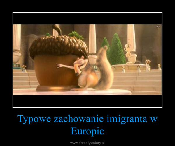 Typowe zachowanie imigranta w Europie –