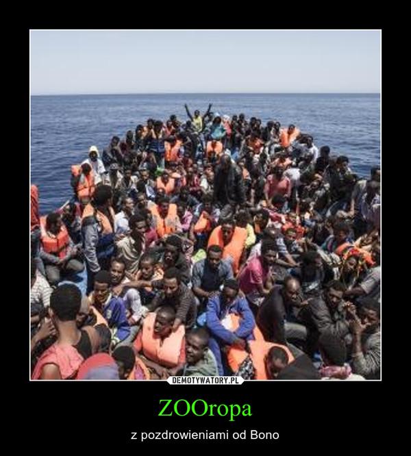 ZOOropa – z pozdrowieniami od Bono