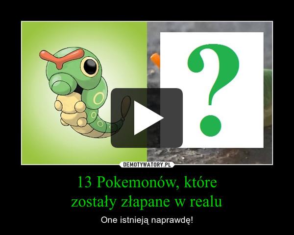 13 Pokemonów, którezostały złapane w realu – One istnieją naprawdę!