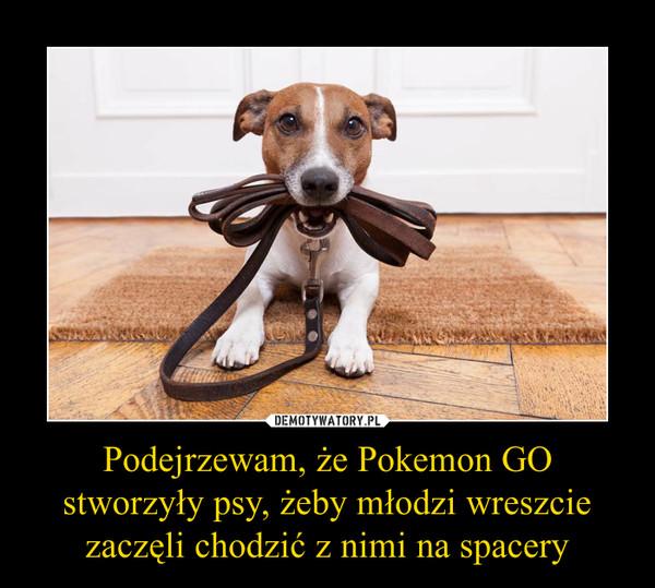 Podejrzewam, że Pokemon GO stworzyły psy, żeby młodzi wreszcie zaczęli chodzić z nimi na spacery –