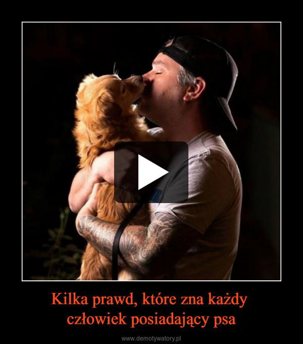 Kilka prawd, które zna każdy człowiek posiadający psa –