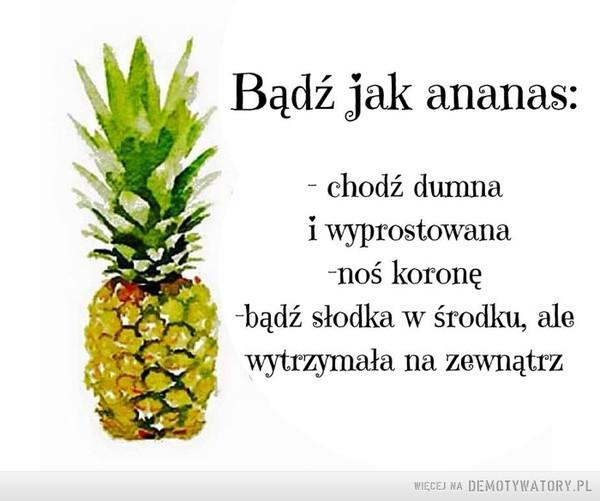 Bądź jak ananas –  Bądź jak ananas:- chodź dumnai wyprostowana-noś koronę-bądź słodka w środku, alewytrzymała na zewnątrz