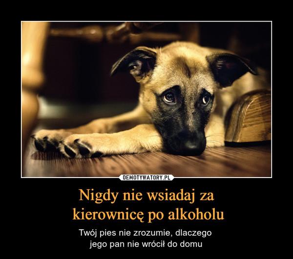 Nigdy nie wsiadaj za kierownicę po alkoholu – Twój pies nie zrozumie, dlaczego jego pan nie wrócił do domu
